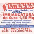Tuttobianco, Imbianchino Bologna, Imbianchino Di Fiducia
